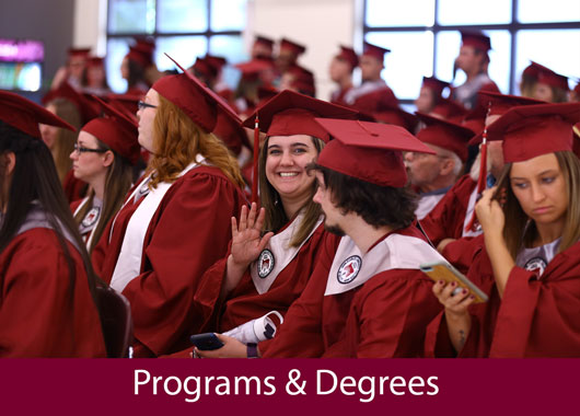 Programs and Degrees